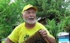 ТЪЖНА ВЕСТ: Почина Царя на пчелите Киро Киров