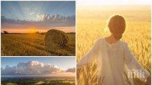 АВГУСТОВСКИ ПЕК: Облаци правят опит да скрият слънцето след обяд, ще духа умерено