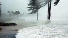 """Стихия: Тропическата буря """"Исаяс"""" отново прерасна в ураган"""