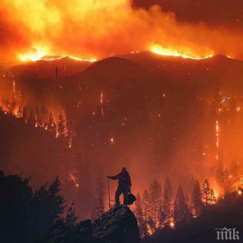Евакуират над 7 000 души заради пожари в Калифорния