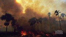 Огнен ад: Хиляди пожари унищожават горите в Амазония