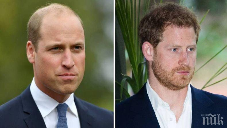 Заподозряха Кейт Мидълтън за кавгата между принцовете Уилям и Хари