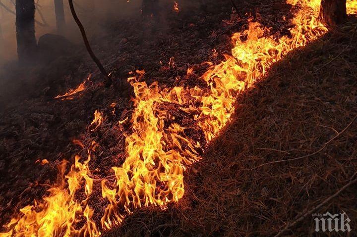 Задържан е мъж, причинил пожара в Свиленград