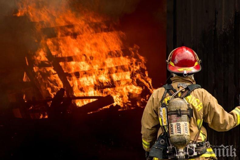 ХЕПИЕНД: Огнеборец осинови куче, изгубило съзнание при пожар