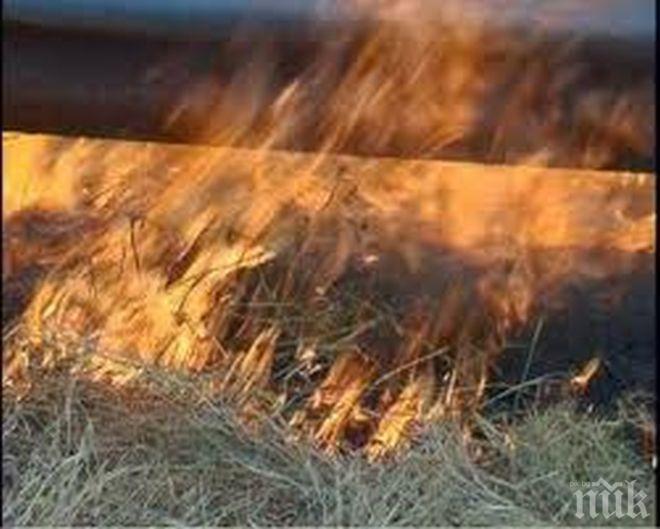 Ето каква е актуалната пожарна обстановка в страната