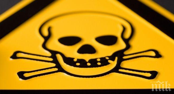 Дядка трови куче с отрова за мишки