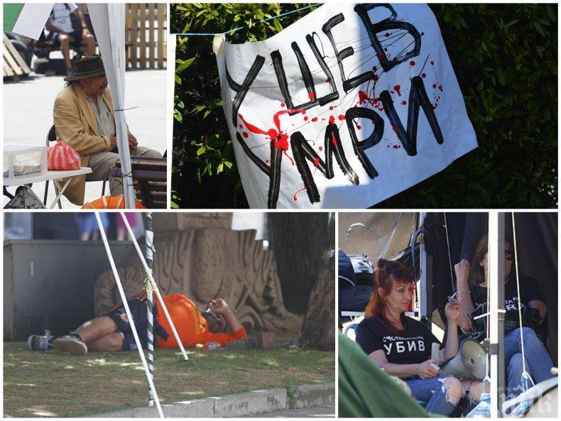 СКАНДАЛ: Незаконните палаткаджии със смъртни заплахи срещу полицията! (СНИМКИ)