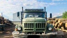 Спипаха два камиона с 40 кубика незаконни дърва