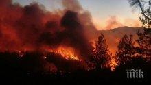 ОГНЕН АД: Над 1 млн. хектара са обхванати от пожари в три американски щата