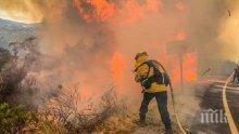 Площта, обхваната от горски пожари в Калифорния рекордно голяма