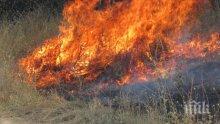 Бебешко парти причини огромен пожар в Калифорния