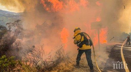 площта обхваната горски пожари калифорния рекордно голяма