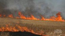 Огромна опасност от пожари грози 12 области в страната (КАРТА)