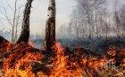 ПОВИШЕНО ВНИМАНИЕ: Опасност от пожари в 17 области - ето къде огънят може да лумне за миг (КАРТА)