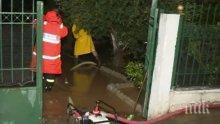 """Циклонът """"Янос"""" унищожи плажове и нанесе огромни щети на села в Гърция"""