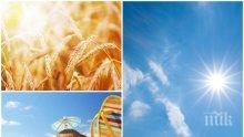 ЧУДЕСНО: Новата седмица започва с много слънце и хубаво време (КАРТА)