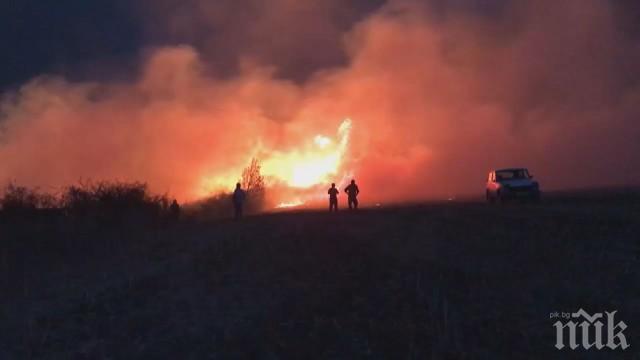 Пожар изпепели над 100 декара гори и лозови масиви в Петричко