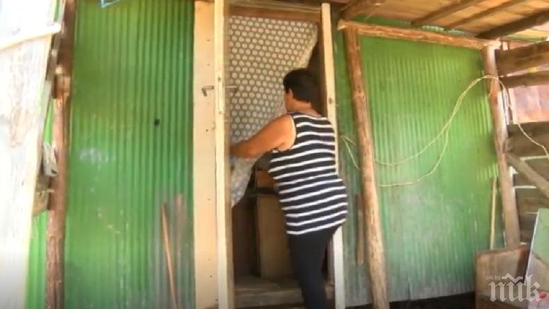 Жена с 200 лв. пенсия и трима сина живее 17 г. във фургон