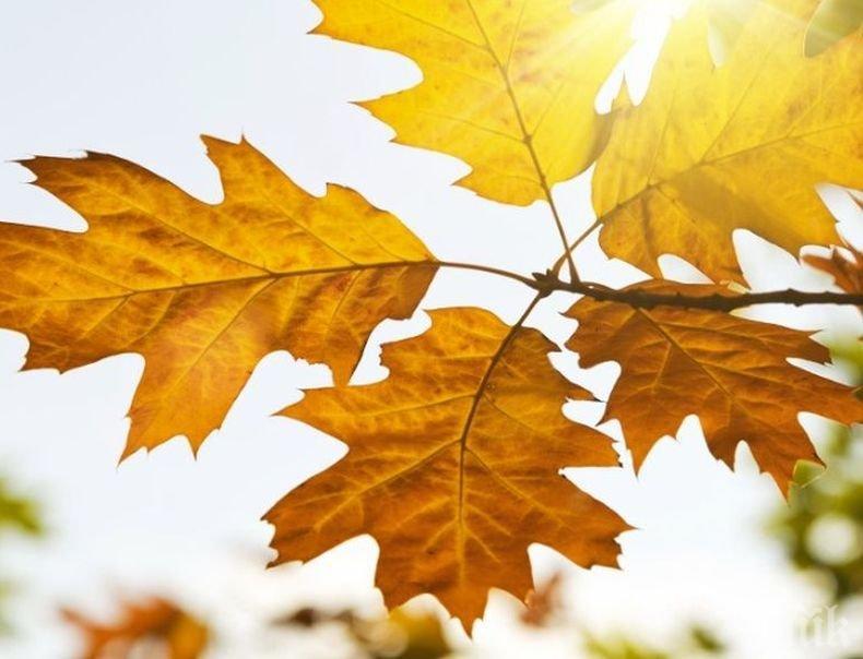 Днес настъпва астрономическата есен