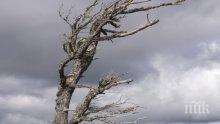 Вятърът обрули Ботев, Мургаш и Черни връх с 40 метра в секунда