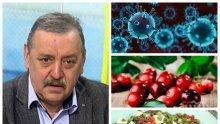 Проф. Кантарджиев разкри тайната си рецепта срещу вируса – яжте тези храни и ще се опазите