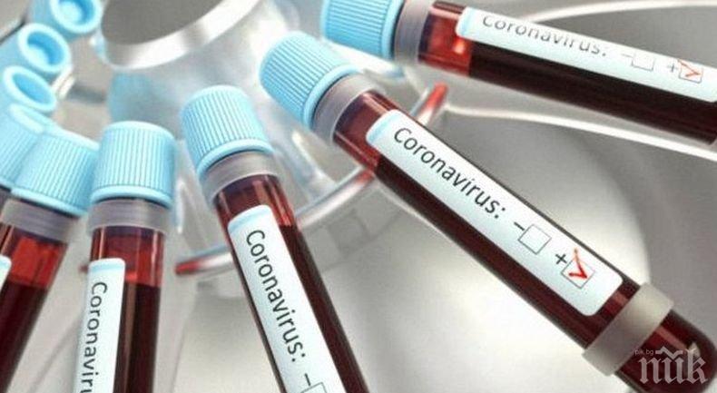 13 155 новозаразени с коронавируса в Бразилия за денонощие
