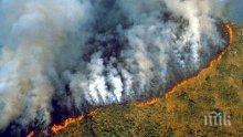 Пожарите от началото на годината в горите на Амазония са най-сериозните от десетилетие