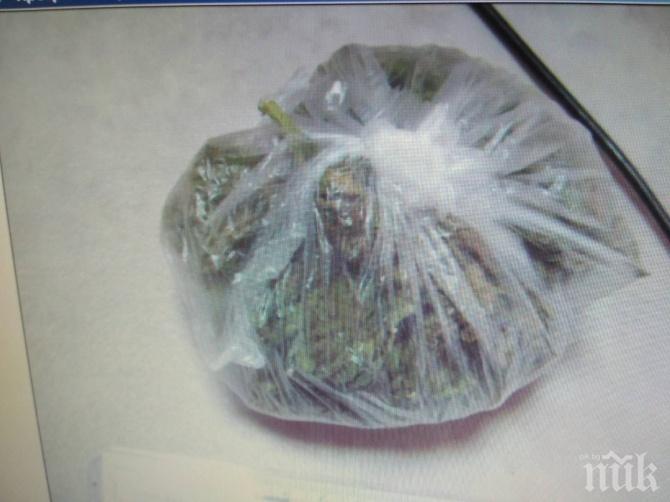 СПЕЦОПЕРАЦИЯ: Задържаха 9 души с дрога за 80 бона (СНИМКИ)