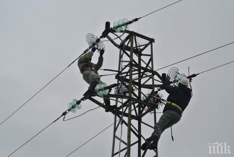 """Обезопасяват за птици електрическите стълбове в парк """"Витоша"""""""