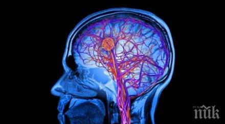 прости техники тренирате мозъка