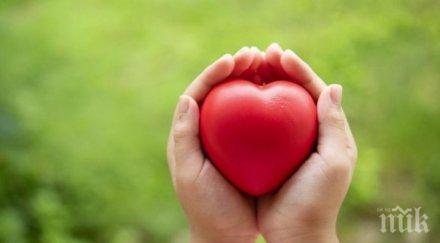 отбелязваме европейския ден донорството