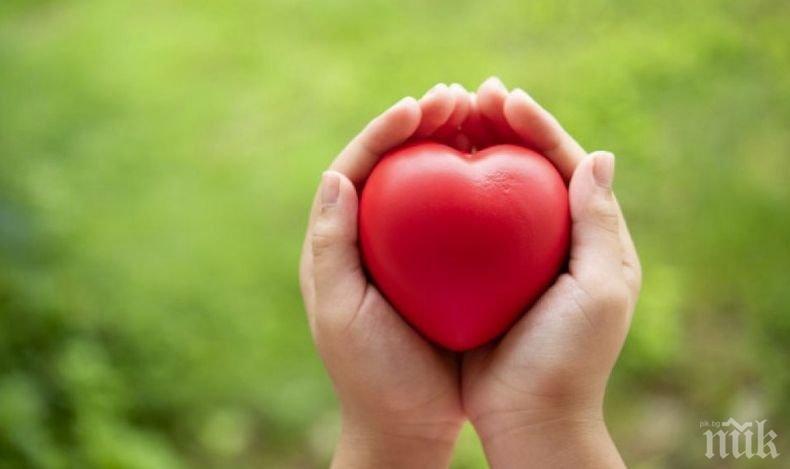 БЛАГОРОДНО: Трима души получиха втори шанс за живот от донор