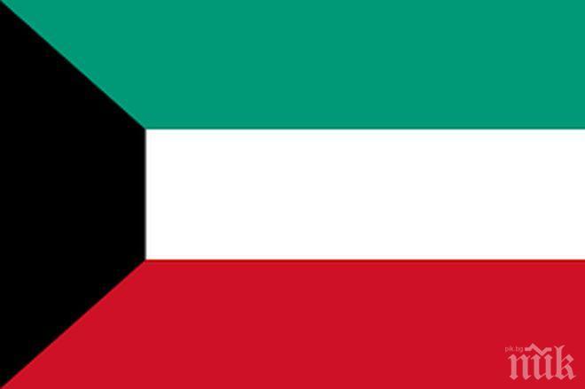 Шейх Мешал ал Ахмад е новият престолонаследник на Кувейт