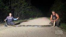 Питон, дълъг 6 метра, заловиха във Флорида (СНИМКА/ВИДЕО)