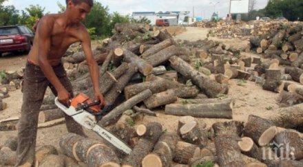 евтини дърва огрев благоевградско