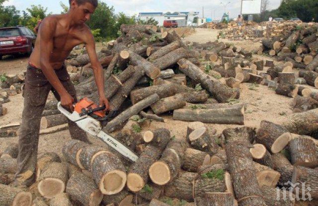 Цената на дървата за огрев в Бургас хвръкна с много нагоре
