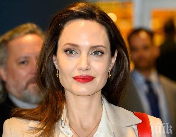 Анджелина Джоли пише книга за човешките права и ще режисира нов филм