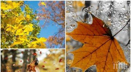 златна есен слънцето грее щедро температурите достигнат градуса