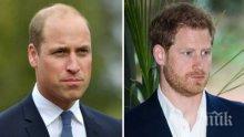 Нови слухове за напрежение между принцовете Уилям и Хари
