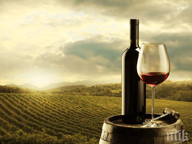 Износът на френско вино намалял с 18% от януари до август