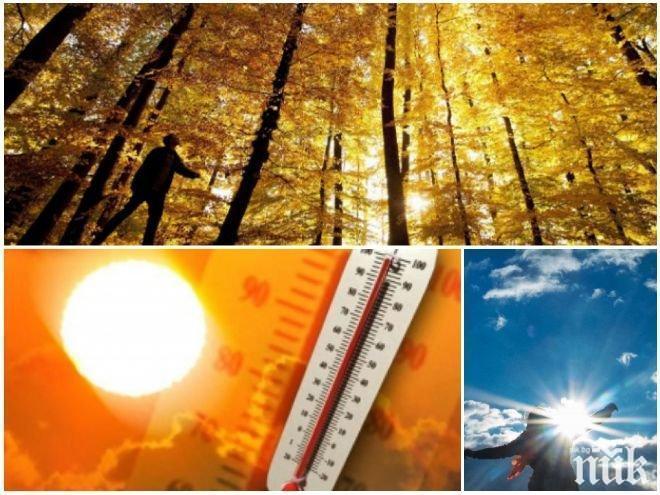 ЗЛАТНА ЕСЕН: Слънцето ще грее щедро, температурите ще стигнат до 26 градуса