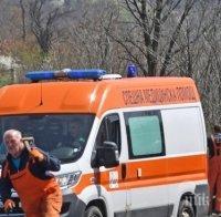 Кола уби пешеходец в Брегово