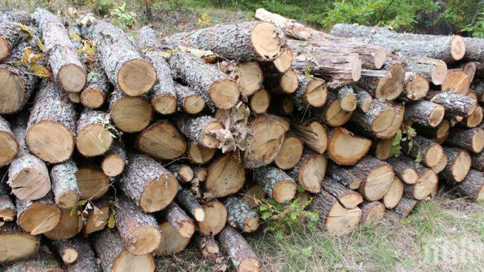 3000 лева глоба, ако се топлиш с незаконни дърва
