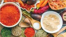 341 ефикасни рецепти за здраве и кулинария в уникалнa eнциклопедия на подправките