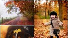 НОЕМВРИЙСКИ КАПРИЗИ: Времето - облачно и слънчево, температурите - пролетни, до 17 градуса