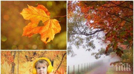 ШАРЕНО ВРЕМЕ: Мъгли, облаци и слънце. Сутрешните температури вече са зимни (КАРТА)