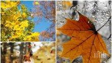ШАРЕНА ЕСЕН: Слънчево ще е в Югозападна България, в останалата част -   облачно. Температурите ще достигнат 15°