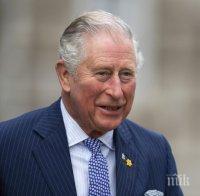 англия шок принц чарлз предложил брак братовчедка