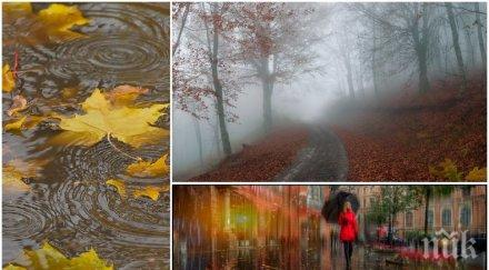 синоптиците предупреждават облачен дъждовен петък чакайте студ карта