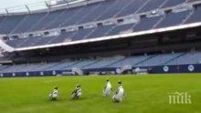 Пингвини се разходиха из стадион в Чикаго